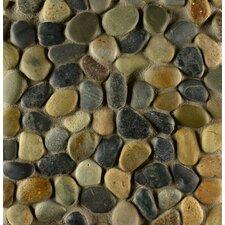 Hemisphere Random Sized Pebble Stone Mosaic Tile in Riverbed