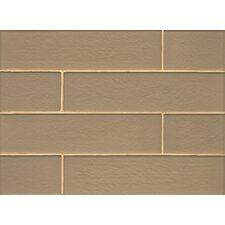 "<strong>Bedrosians</strong> 4"" x 16"" Mosaic Field Tile Gloss in Heiress"