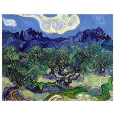 'Olive Trees' by Vincent Van Gogh Painting Print on Canvas