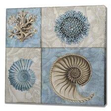 Sea Life VI Graphic Art on Canvas
