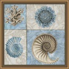 Sea Life VI Framed Graphic Art