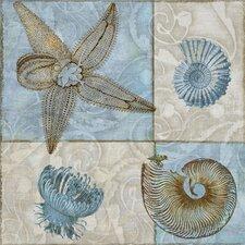 Sea Life V Graphic Art