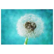 'Dandelion One' by Silvia Cook Photographic Print on Canvas