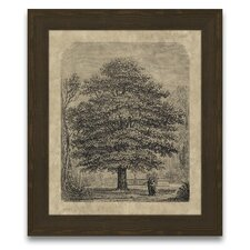 <strong>Epic Art</strong> Timeless Timber Horse Chestnut Tree Wall Art
