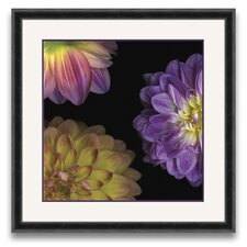 <strong>Epic Art</strong> Flora Moderna Dahlia I Wall Art