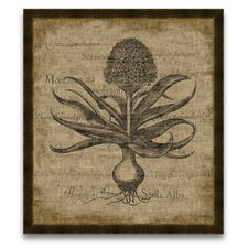 <strong>Epic Art</strong> A Rustic Retreat Hyacinthus Wall Art