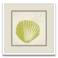 Cousteau's Sketchpad Tina's Shells III Framed Graphic Art