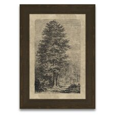 Timeless Timber Alder Tree Wall Art