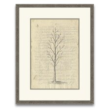 Timeless Timber Fig Tree I Framed Graphic Art