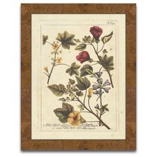 The Botanist's Measure Autumn Weinmann I Framed Graphic Art