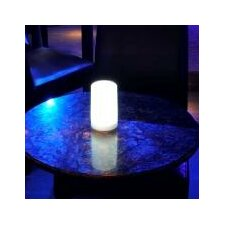 <strong>Contempo Lights Inc</strong> LuminArt Splendor Table Lamp
