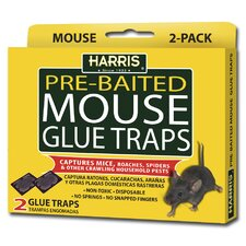 Pre Baited Mouse Glue Traps (2 Pack)