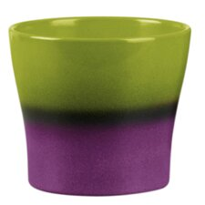 Cache Pot Planter