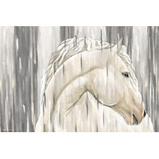 """""""White Horse"""" Painting Print on Canvas"""
