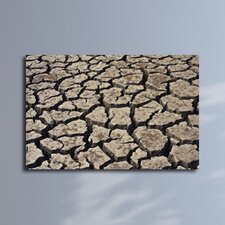 Cracked Dirt Surface Photographic Print on Canvas