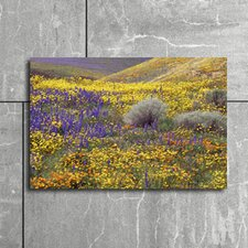 California Wildflowers in Gorman Photographic Print on Canvas