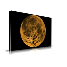 Orange Moon Graphic Art on Canvas