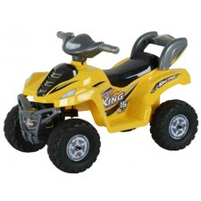 Lil Kids Ride On 6V Battery Powered ATV