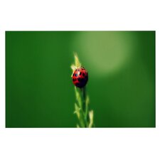 Ladybug Hugs by Robin Dickinson Decorative Doormat