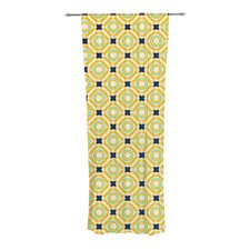 Tossing Pennies II Curtain Panels (Set of 2)