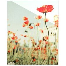 Poppy Floating Art Panel