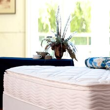 "<strong>Sleep Revolution</strong> 12"" Euro Box Top iCoil Spring Mattress"
