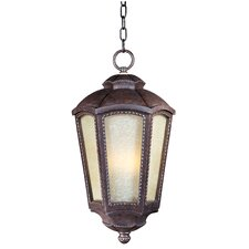 Pacific Heights VX ES 1 Light Outdoor Hanging Lantern