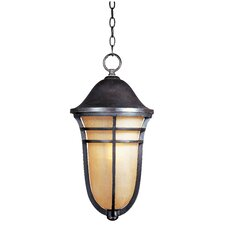 Westport VX ES 1 Light Outdoor Hanging Lantern
