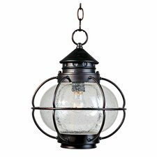 Lutzburg 1 - Light Outdoor Hanging Lantern