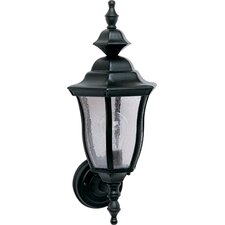 Madrona Large Outdoor Wall Lantern