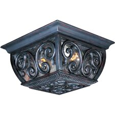 Vigore 2 - Light Outdoor Ceiling Mount