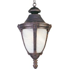 Wakefield DC 1 Light Outdoor Hanging Lantern