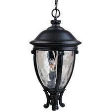 Crevoh 3 - Light Outdoor Hanging Lantern