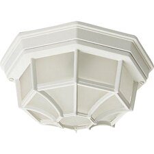 Side Door Outdoor Flush Mount