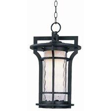 Artor 1 - Light Outdoor Hanging Lantern