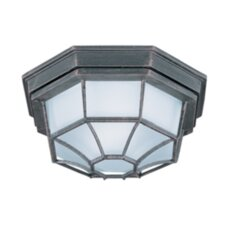 Niches 1 - Light Outdoor Ceiling Mount