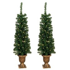 Entryway Porch 4' Green Artificial Christmas Tree with 60 Pre-Lit Lights (Set of 2)