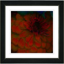 """Dahlia"" by Zhee Singer Framed Giclee Print Fine Art in Red"