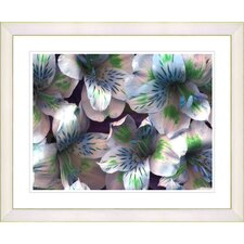 """Spring Flowers - Blue"" by Zhee Singer Framed Fine Art Giclee Print"