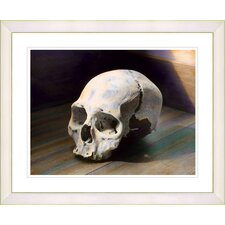 """Scull"" by Mia Singer Framed Fine Art Giclee Print"