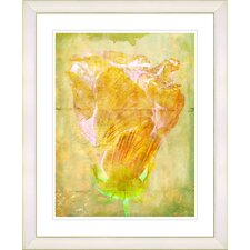 """Yellow Dansing Bud - Honey"" by Zhee Singer Framed Fine Art Giclee Print"