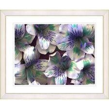 """Spring Flowers - Purple"" by Zhee Singer Framed Fine Art Giclee Print"