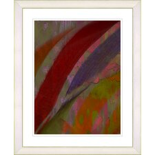 """Cinnabar - Red"" by Zhee Singer Framed Fine Art Giclee Print"