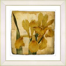 Vintage Botanical No. 46A by Zhee Singer Framed Giclee Print Fine Wall Art
