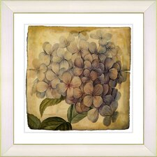 Vintage Botanical No. 18A by Zhee Singer Framed Giclee Print Fine Wall Art