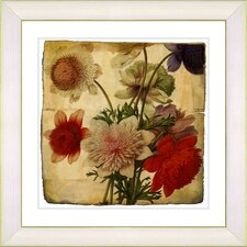 Vintage Botanical No. 20aA by Zhee Singer Framed Giclee Print Fine Wall Art