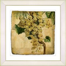 Vintage Botanical No. 09A by Zhee Singer Framed Giclee Print Fine Wall Art