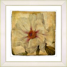 Vintage Botanical No. 52A  by Zhee Singer Framed Giclee Print Fine Wall Art
