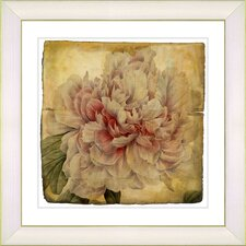 Vintage Botanical No. 54A by Zhee Singer Framed Giclee Print Fine Wall Art