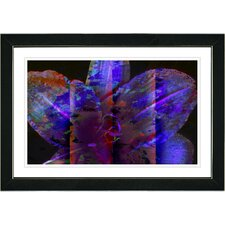 "<strong>Studio Works Modern</strong> ""Blue Night Flower"" Framed Fine Art Giclee Print"